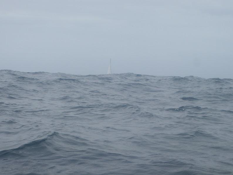 2 sailing boat